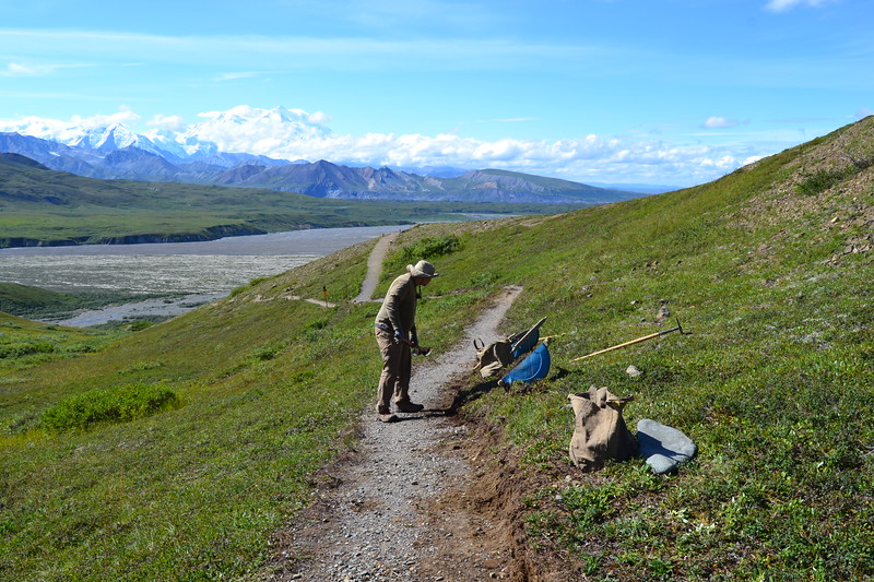 Wilderness Volunteers: 2017 Denali National Park (Alaska)
