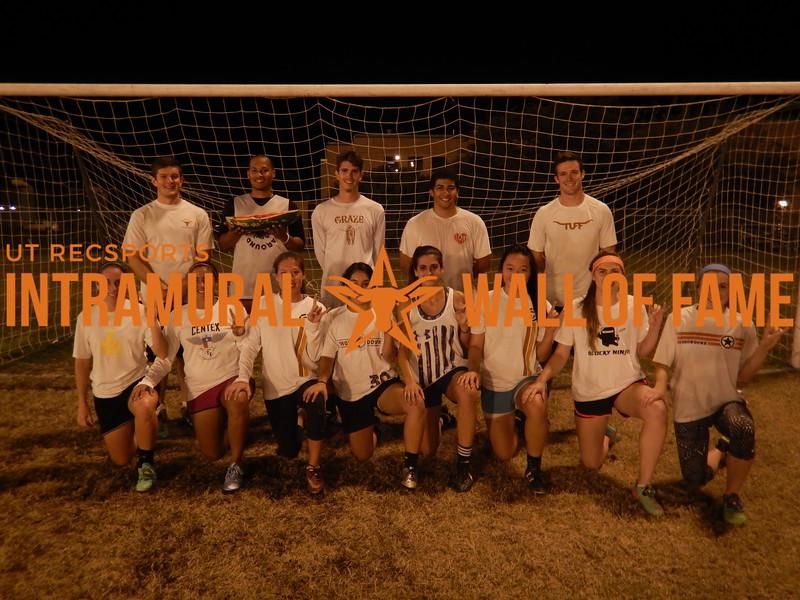 Fall 2015 Soccer Coed C Champion The Grapefruit Technique