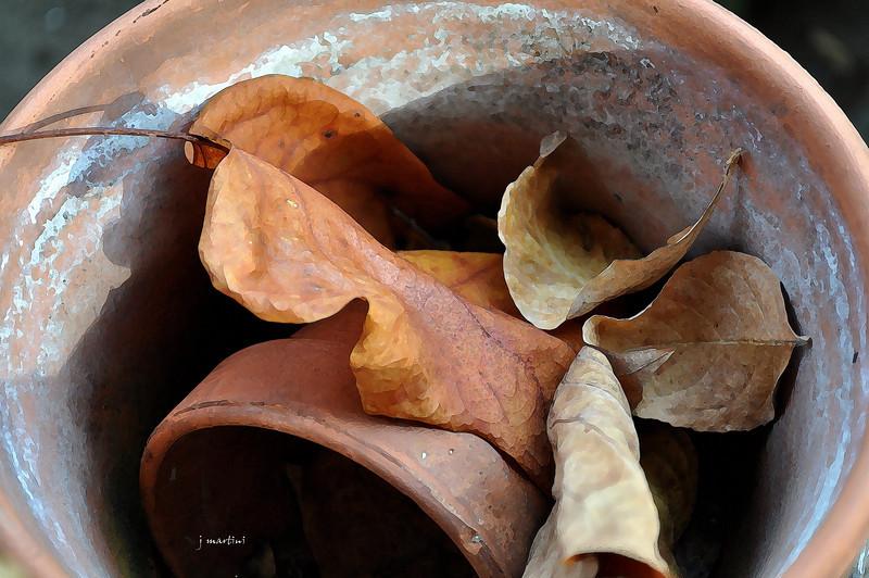 fall potting 12-12-2011.jpg