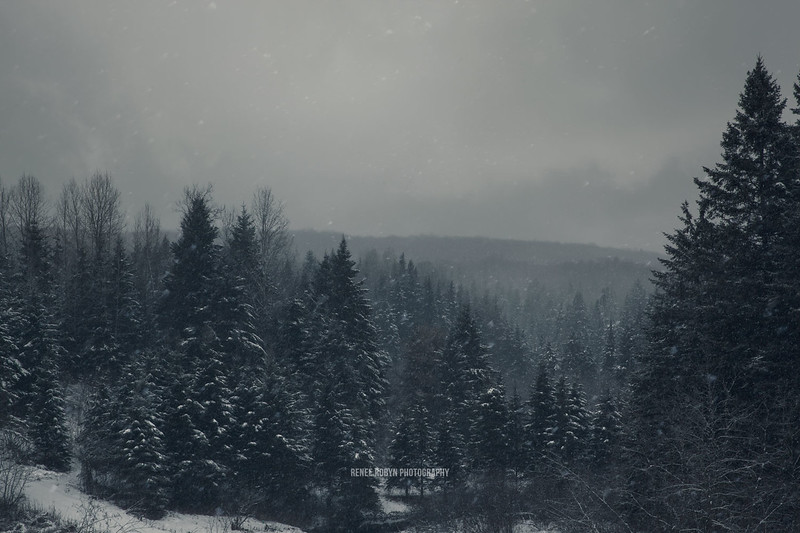 Quebec-Winter_9588WEB.jpg