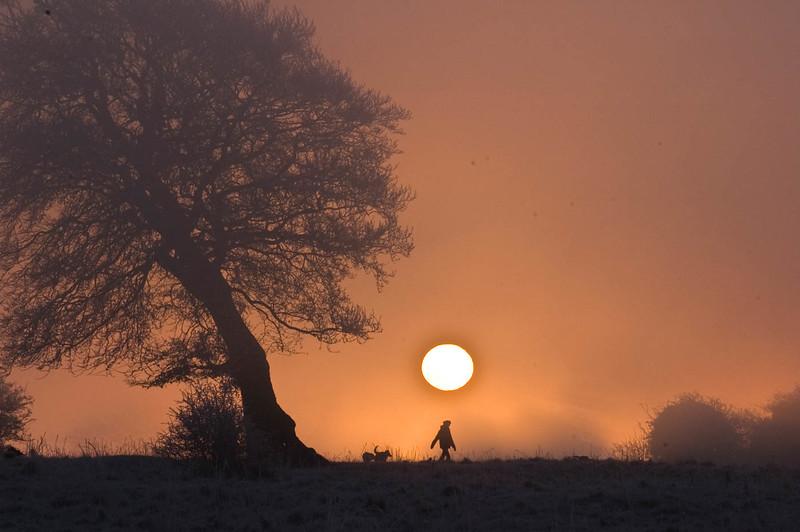 Lone Tree Sunrise-7.jpg