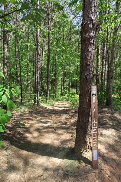 Riley Moore Falls Trail