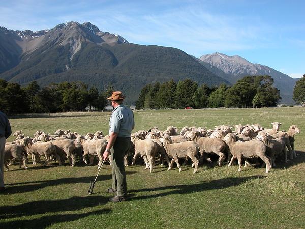 Scenic New Zealand 2005