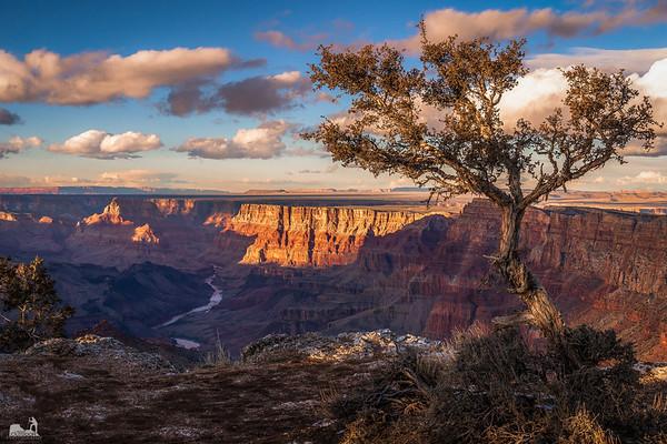 2022 National Parks Calendar