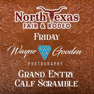 Friday Grand Entry and Calf Scramble