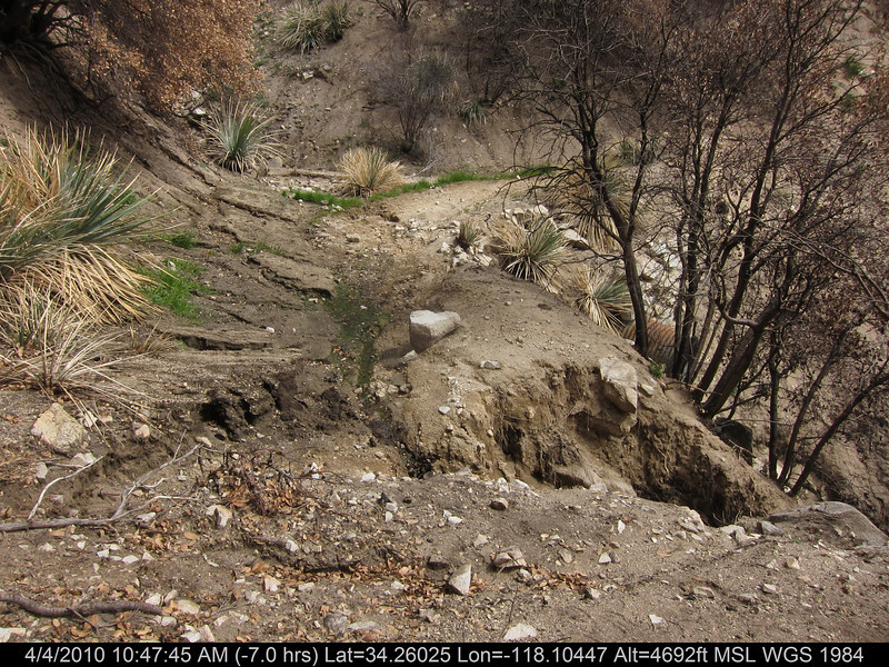 20100404024-Angeles National Forest, Strawberry Peak trail.JPG
