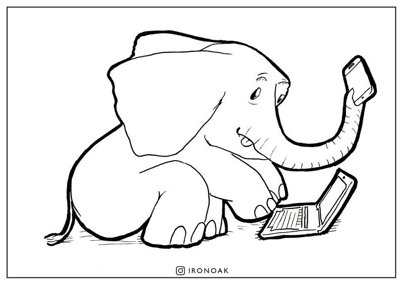 01 Elephant.jpg