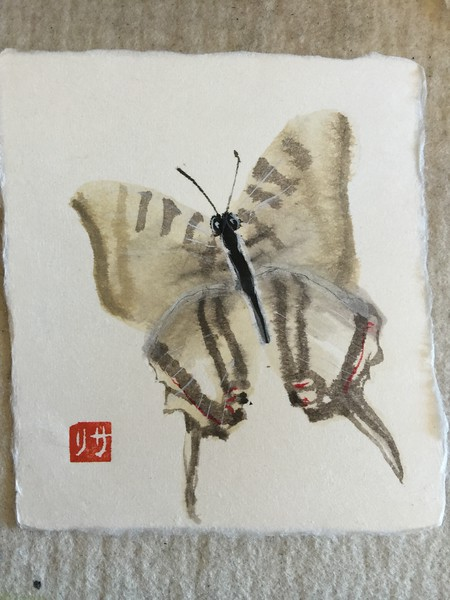 Butterfly study, ink, watercolor on washi card