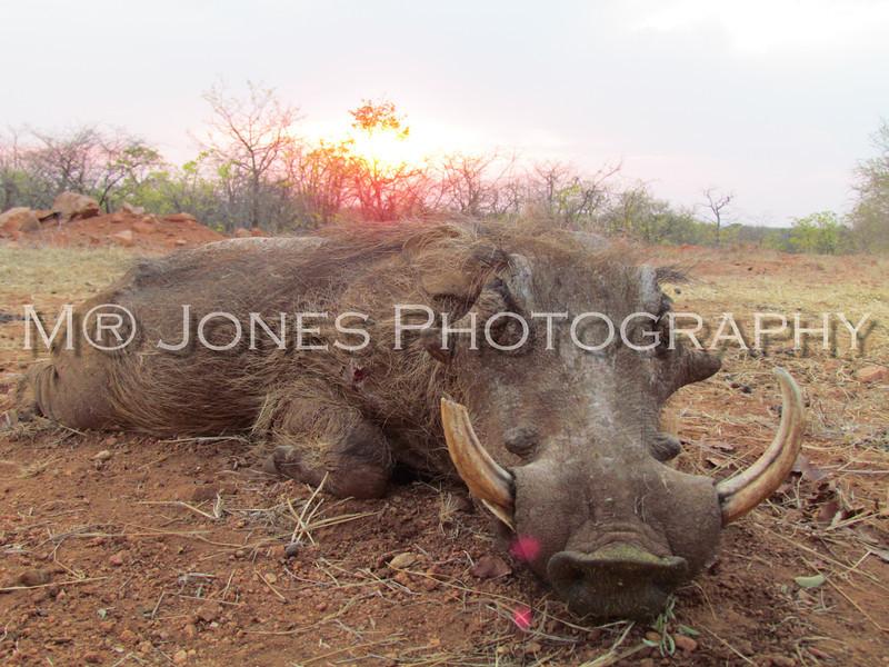 Choates Africa-28.jpg
