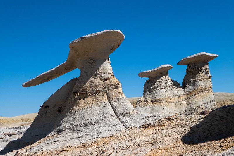 Interesting Hoodoo Group