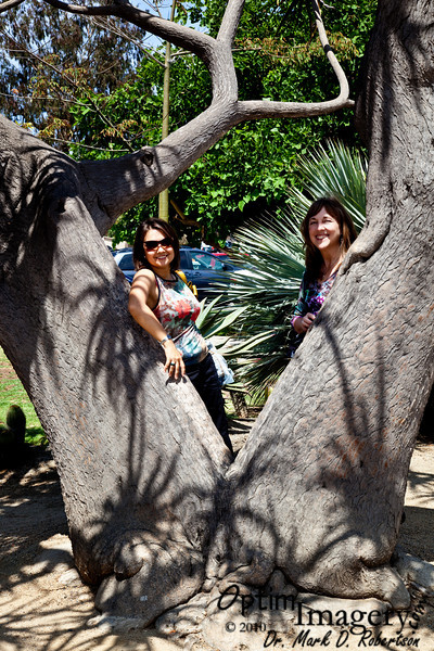 AUGUST, 2010:  SAN DIEGO, VOL. 2 -- Balboa Park