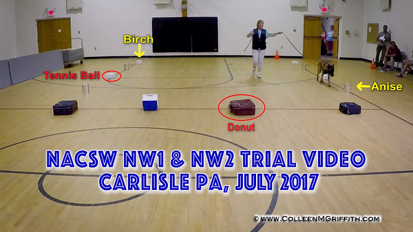 Carlisle PA July 2017 NW Trials
