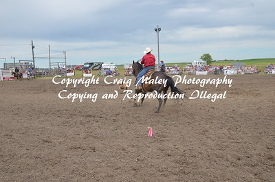 PERF TEAM ROPING 06-21-2015