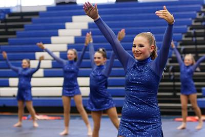 Liberty Public School Blue Jays