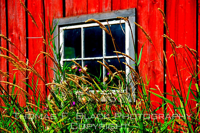 Barn Windows ~ Plus those of other bucolic structures