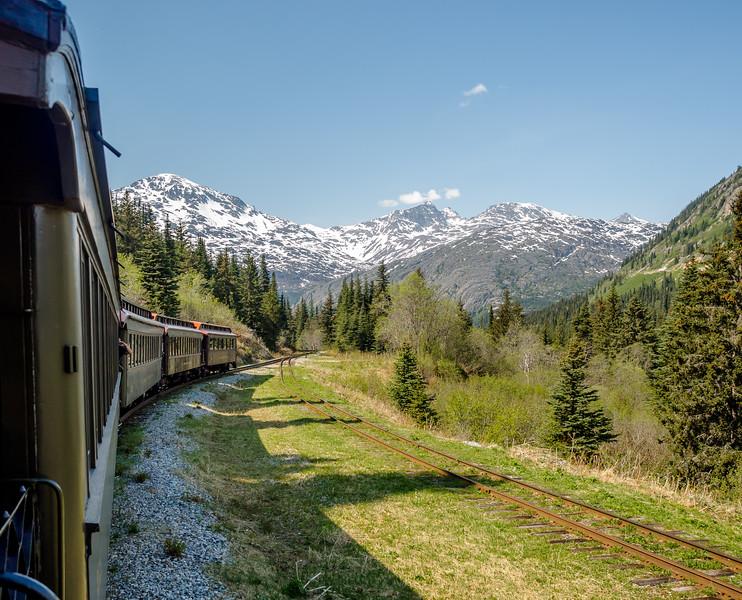 193 Alaska Train (1 of 1).jpg