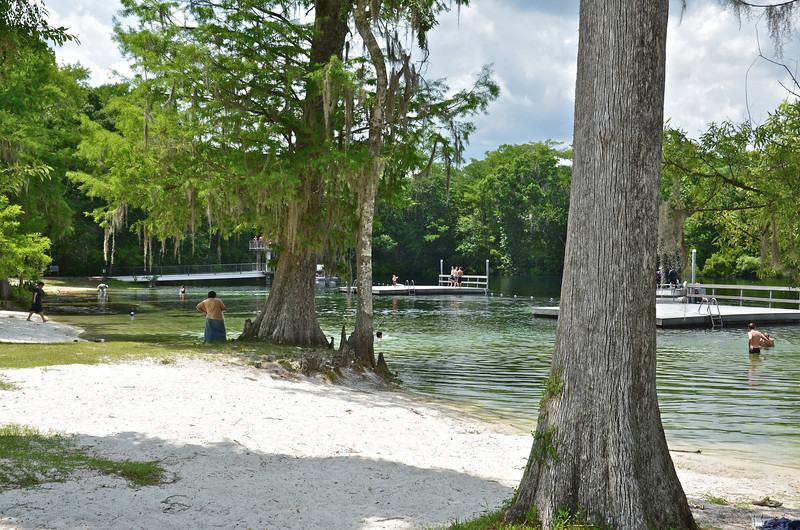 Wakulla Springs State Park and Lodge is a 6,000 acre wildlife sanctuary hidden in Spanish moss-draped Florida woodlands, 30 minutes from Tallahassee.  Wakulla Springs is one the world's largest and deepest freshwater springs creating the Wakulla River that flows to the Gulf of Mexico.  Purchased in 1934 by Edward Ball of the St. Joe Paper Company, he built the elegant two-story lodge that is still in use today.
