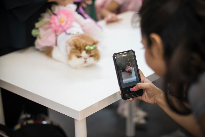 VividSnaps-The-Seletar-Mall-CAT-Dress-Up-Contest-022.jpg