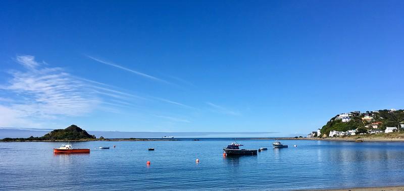 Quiet morning in Island Bay