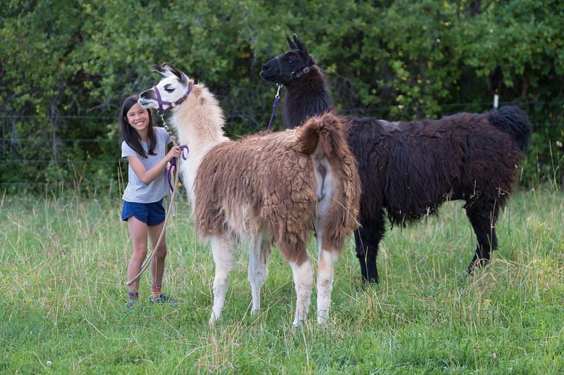Jay Waltmunson Photography - Wallowa Llamas Reunion - 237.jpg