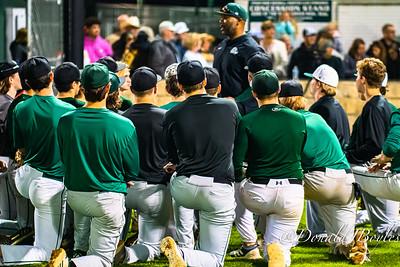 2020 Texas High School Baseball Season