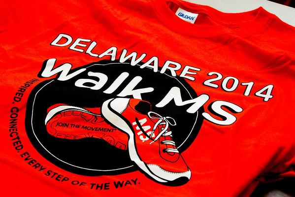 MS Newark Walk 2014