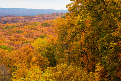 Indiana Fall Color