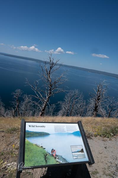 Yellowstone-20200804-8456.jpg