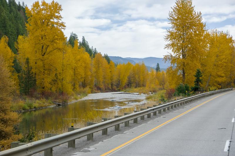 Western Montana Fall Foliage