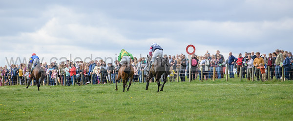 Mosshouses Point to Point 28-4-2019