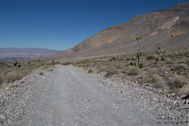 Road to Racetrack Playa - Death Valley National Park, CA, USA