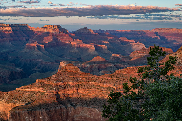 The Amazing Grand Canyon