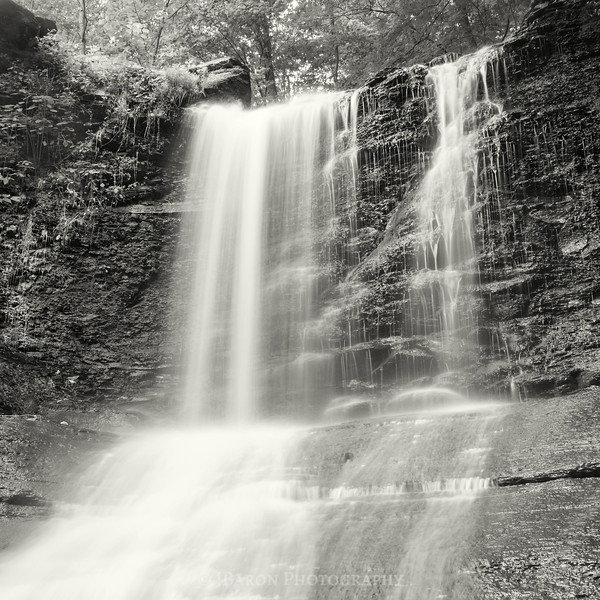 Fall Run Park Waterfall Monochrome