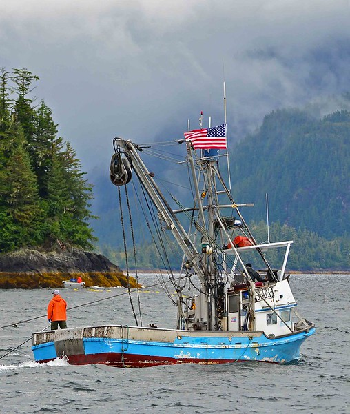 The Alaskan purse seiner Potato Point fishes for pink salmon in Prince Edward Sound.
