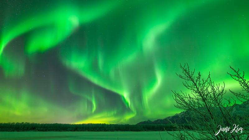 Nov20_Knik River Aurora__6105219-Edit-Juno Kim.jpg