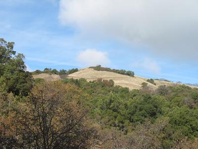 Sugarloaf Bald Mountain 2011
