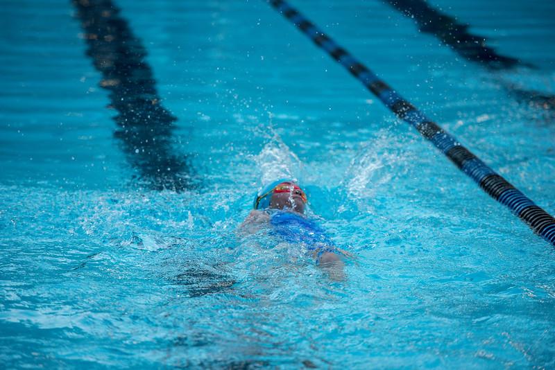 lcs_swimming_kevkramerphoto-525.jpg