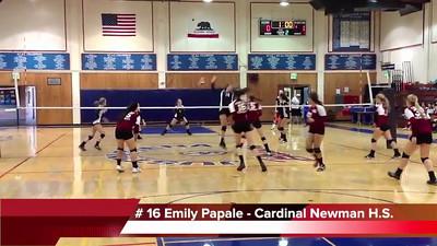 Cardinal Newman Volleyball