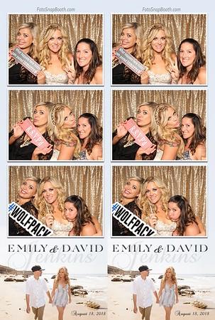 Emily & David's Wedding 2018