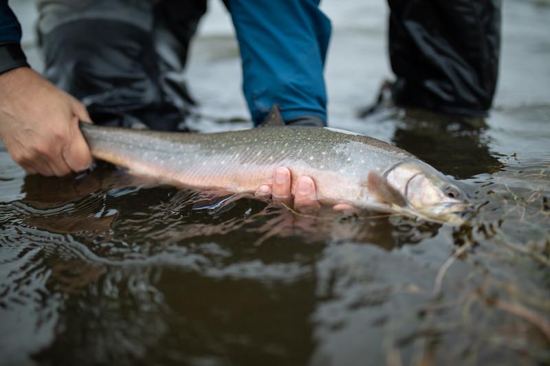holknaicelandatlanticsalmonflyfishing.bencarmichael (93 of 343).jpg
