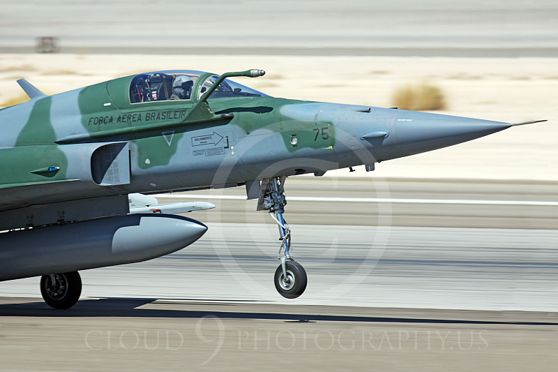 CUNMJ 00141 Northrop F-5E Freedom Fighter Brazilian Air Force by Peter J Mancus.JPG