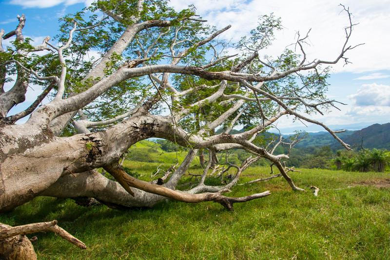 Costa Rica_Landscapes-3.jpg