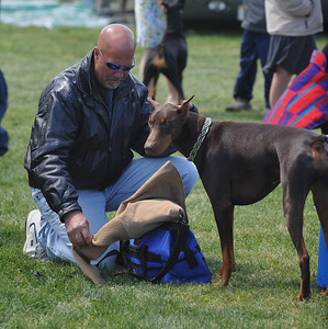 New Jersey Dog Show May 9th