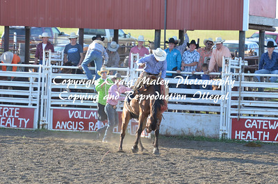 06-21-14 PM Perf Saddle Bronc