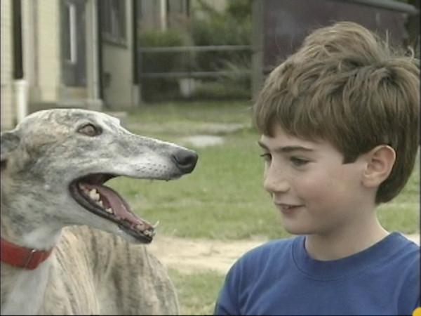 """""""Dog bites"""""""