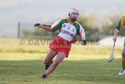 Kiltegan Senior Camogie League 2019
