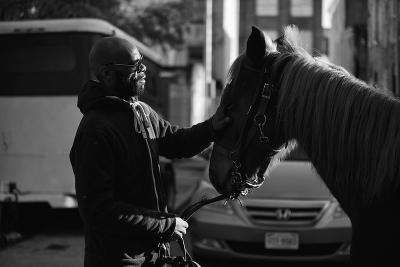 Baltimore -- Gready pats Pimp after a short, but tiring ride in Hollins Market on Feb. 24, 2019. Photo by Eric Lee