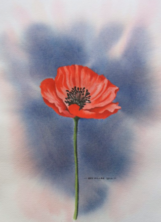 11-11-19 Poppy Remembarance Day