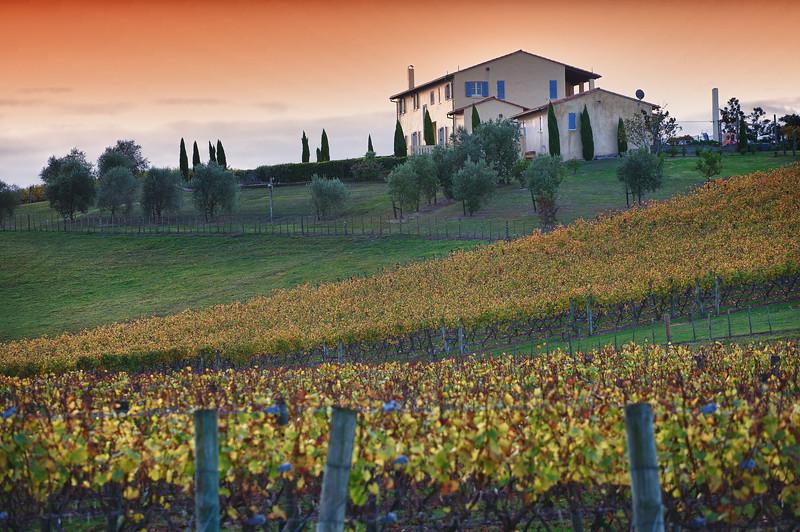 Riverhead Winery