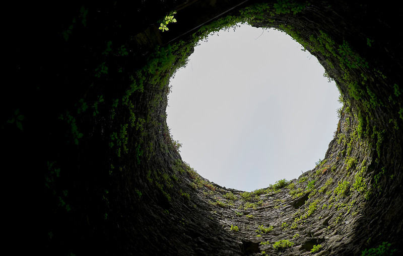 Looking up into a guard tower.  Fern plants clung to the rock walls.